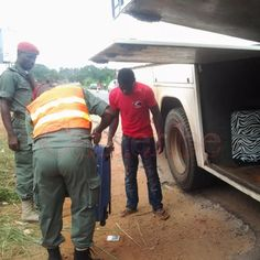 CAMEROUN :: Circulation routi?re : Des policiers menac?s :: CAMEROON