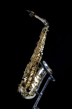 Kenny G E-Series IV Alto-Saxophone Lacquer Body & Keys with Silver Neck & Bell Saxophone Instrument, Clarinet, Music Down, Jazz Players, Kenny G, Trumpets, Music Memes, Music Therapy, Hand Engraving