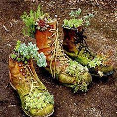 In een oude schoen daar past een.. ja een plant in