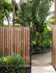 This overgrown Herne Bay garden was transformed into the ultimate oasis – Australian Landscaping Small Tropical Gardens, Tropical Garden Design, Tropical Landscaping, Modern Landscaping, Backyard Landscaping, Modern Tropical, Tropical Plants, Backyard Ideas, Exterior Design