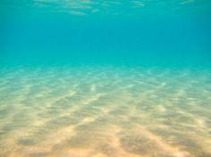 sandy seabed