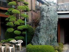 garden in Japanese hotel courtyard