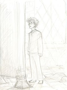 """The Mirror of Erised....""""It does not do to dwell on dreams, Harry"""""""