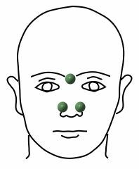 Acupressure points for colds - HEALTH Massage Logo, Medical Pictures, Medical Facts, Acupressure Points, Winter Hairstyles, Reflexology, Ayurveda, Diy Beauty, Body Care