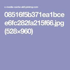 08516f5b371ea1bcee6fc282fa215f66.jpg (528×960)