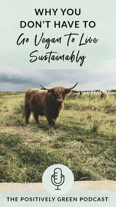 Why you don't have to go vegan to live sustainably - The Positively Green Podcast