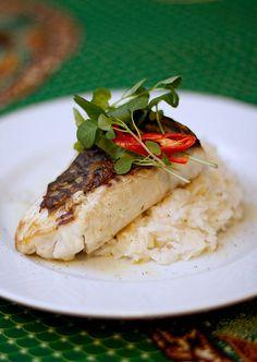 Tilápia grelhada com arroz de coco e palmito | Sabor Sonoro :: Receitas, sabores e outras viagens