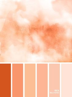 Looking for Colour Inspiration? Check out this color board a Tones of Peach Color Palette inspired by peach watercolor, Peach Tone Color, peach combination Peach Colour Combinations, Peach Color Schemes, Peach Color Palettes, Colour Pallette, Peach Colors, Peach Palette, Peach Orange Color, Colours, Palette Pantone