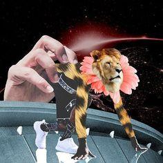 "36 Likes, 8 Comments - Febrian Prambudi (@feb.prambudi) on Instagram: ""can hide • but, can't run . . . . #collageartwork #lion #flower #run #grab #galaxy #cheetah…"""