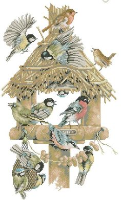 birds at feeder  To get the chart, click on the first line under the photo