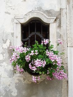 I like this flowerbox a lot. It occurs to me, that a flowerbox like this one would be excellent on a bathroom window to create privacy.