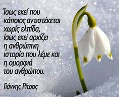 Great Words, Wise Words, Greek Quotes, Me Quotes, Poetry, Wisdom, Inspiring People, Greeks, Karma
