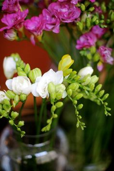 "flowers a-z: ""f"" is for freesia (and fritillaria) – Design*Sponge Beautiful Flowers Garden, Pretty Flowers, Best Smelling Flowers, Freesia Flowers, Deco Floral, Flower Market, Summer Flowers, Trees To Plant, Flower Power"