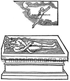 Anonimo - Tavole dal Rosarium Philosophorum (1550) Rosarium Philosophorum, rosarium, alchimia, iconografia alchemica, alchemy, alchimie