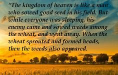 Matthew 13:24-26, The Parable of the Weeds. For explanation of this parable read Matthew 13:36-43