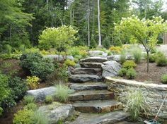 More pretty steps