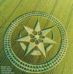cool Crop Circle at Stonehenge, Nr Amesbury, Wiltshire. Reported 8th  July 2016