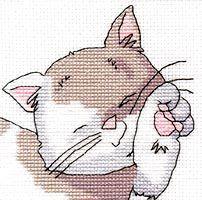 1 gatito