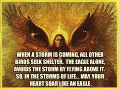 Inner peace Native American Eagle Quote ~ Soar Like an Eagle through Life's Storms! Native American Prayers, Native American Spirituality, Native American Cherokee, Native American Indians, American Indian Quotes, Native American Quotes, Native American Symbols, Native American History, Força Interior