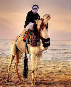 Bedouin.