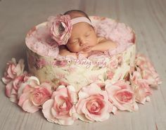 Newborn Baby Girl; Newborn photography; Maternity photography; www.tinadoane.com *[Barefoot Photography  by Tina Doane]