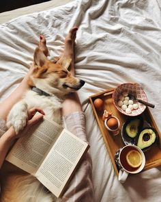 all the best things a little puppy love Source by janetgwendesign The post a little puppy love appeared first on Kuba Dog Life. Corgi Dog, Dog Cat, Home Shooting, Cozy Aesthetic, Aesthetic Pics, Warm Undertone, Little Puppies, Soft Blankets, Dog Life
