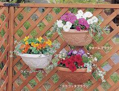 【本日店内P13倍以上】植木鉢 ウォールポット 壁掛け 幅28cm ア :G118330F:アイリスプラザ - 通販 - Yahoo!ショッピング