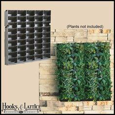 "Living Wall Planter with Moisture Mat and Mounting Bracket - 20""W x 20""H $36.85"