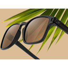 Polyvore Clipper - Sunglass Hut ❤ liked on Polyvore featuring accessories, eyewear and sunglasses