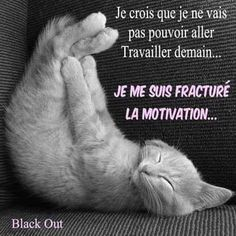 Je me suis fracturé la motivation. Quotes Español, Best Quotes, Funny Quotes, Motivation, Quote Citation, Positive Attitude, Funny Cats, Funny Pictures, Jokes