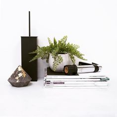 Simple elegance Simple Elegance, Elegant, Floating Shelves, Instagram Posts, Accessories, Home Decor, Classy, Decoration Home, Room Decor