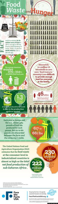 Food Infographics - The facts about food waste and hunger. Face the facts USA's infographic compares food waste and hunger, and the numbers are astounding. Think Food, Food For Thought, Food Tech, World Hunger, Food Insecurity, Food System, Food Science, Food Facts, Hydroponics