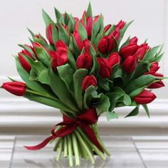 Elegant Green Leaves Wity Red Tulips For Valentines Day
