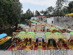 Mexico City, November 2011 -- Trajineras, which are brightly colored boats that shuttle visitors through the canals.