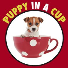 Love this t-shirt. Puppy in a Cup!!!!! Jess Day & New Girl specialty