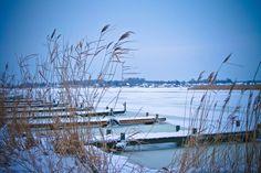 Isen har overtaget Præstø fjord. #praestoe