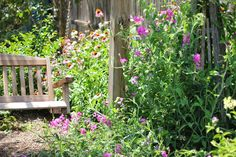{the cottage nest}: Today in the Yard