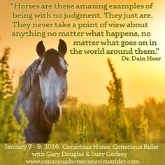 Conscious Horse, Conscious Rider  January 7 to 9, 2016