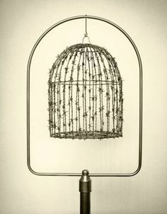 Spanish photographer Chema Madoz creates twisted, mind-bending images using everyday, ordinary objects. Placing the objects into surreal scenes, he fools Poema Visual, Montage Photo, Hidden Face, Foto Art, Bird Cages, Wire Art, Spanish, Illustration Art, Objects