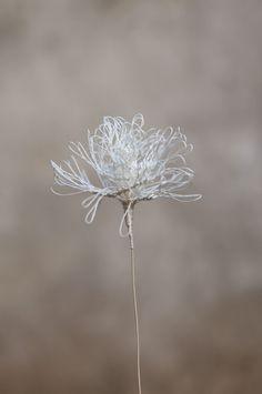 Laurence Aguerre - Sculptures Textiles   Fleurs