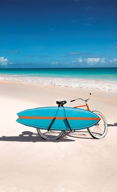 Surfboard and bicycle