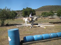 Using poles to get your horse bending and watching where is feet are going!