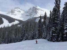 Skifahren in den Kanadischen Rockies: Das musst du wissen