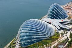Wilkinson Eyre Cooled Conservatories at Gardens by the Bay in Singapore