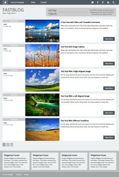 FastBlog Theme Review - RichWP