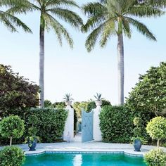 Love this pool and gate saved from architectural digest