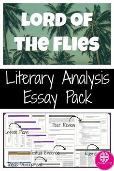 language analysis the perfect essay
