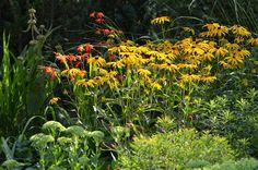 *Garten-Liebe* Plants, Herbs