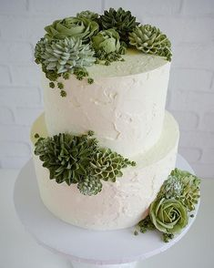 Spanish stucco + succulents in buttercream