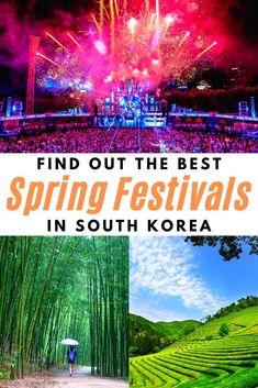 Travel Advice, Travel Guides, Travel Tips, Travel Destinations, Travel Articles, Amazing Destinations, Festivals Around The World, Travel Around The World, China Travel